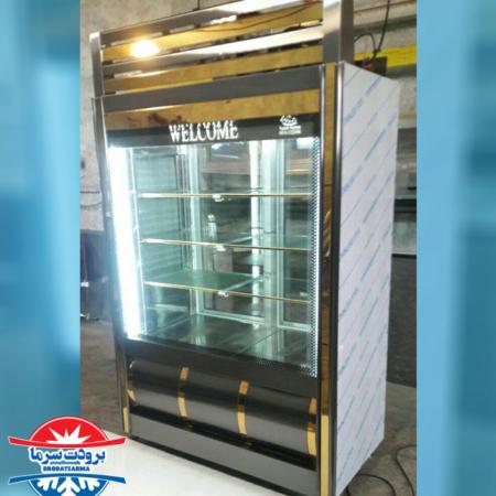 یخچال ایستاده پروتئینی و سوپری انباری دار بدنه استیل