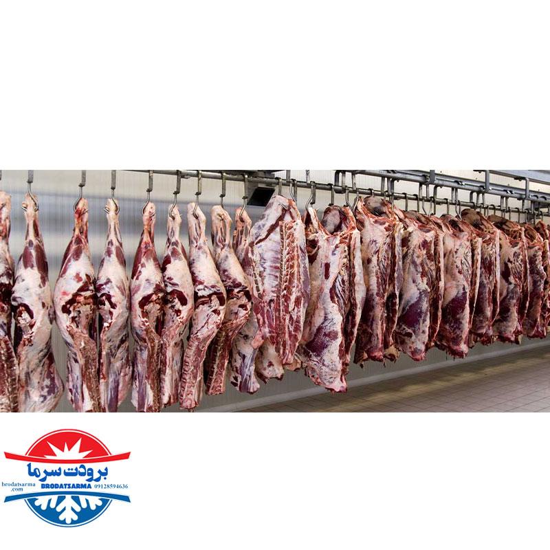 دمای نگهداری گوشت در سردخانه