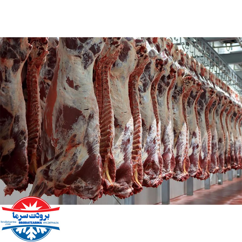 سردخانه گوشت صنعتی